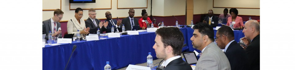 Paris Forum regional conference in St Kitts and Nevis