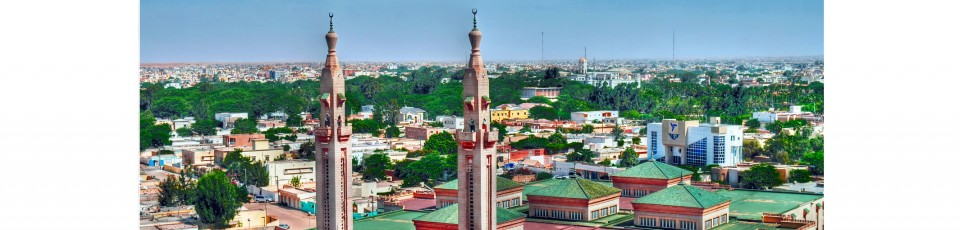 Mauritania benefits from the debt service suspension initiative