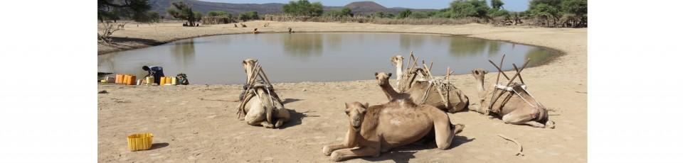 La République de Djibouti bénéficie de l'extension de l'ISSD