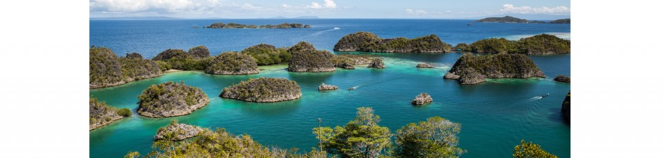 The Papua New Guinea benefits from the debt service suspension initiative