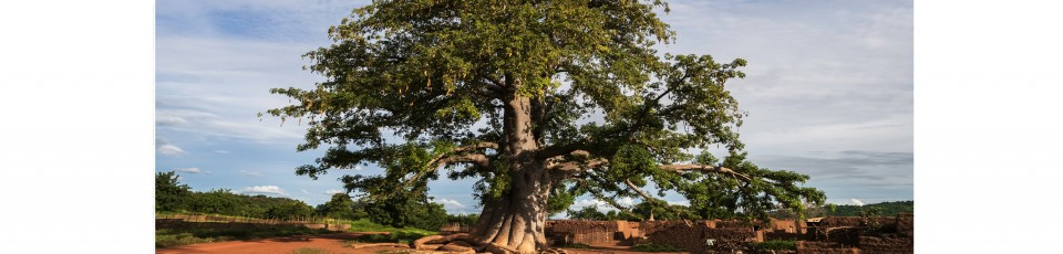 Burkina Faso benefits from the final extension of the DSSI