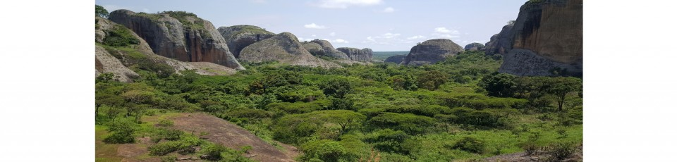 Angola benefits from the extension of the DSSI