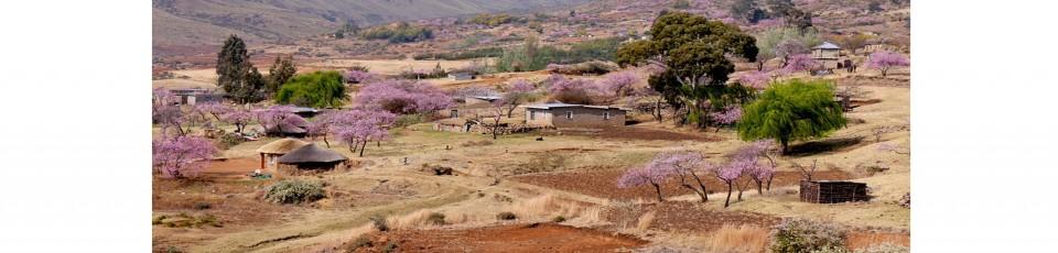 Le Lesotho bénéficie de l'initiative de suspension du service de la dette