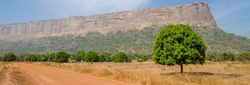 La Guinée bénéficie de l'initiative de suspension du service de la dette