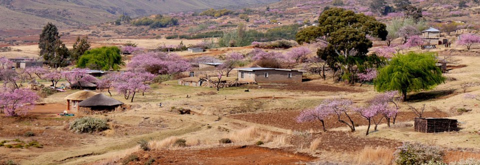 Lesotho benefits from the debt service suspension initiative